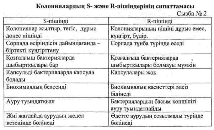 Колониялардың S- және R-пішіндерінің сипаттамасы