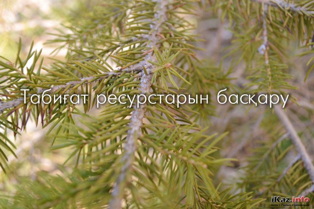 Табиғат ресурстарын басқару және пайдалану